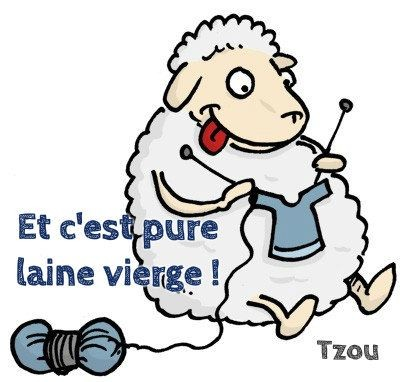 mouton qui tricote...