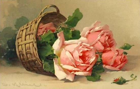 Roses de Catharina Klein