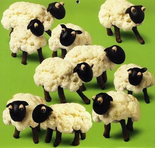 Moutons choux-fleurs !