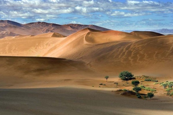 desert center chat sites News from the california desert: palm springs, indio, coachella, palm desert, indian wells, la quinta, cathedral city, rancho mirage and desert hot springs.